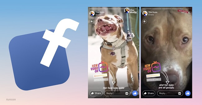 Facebook Stories for business