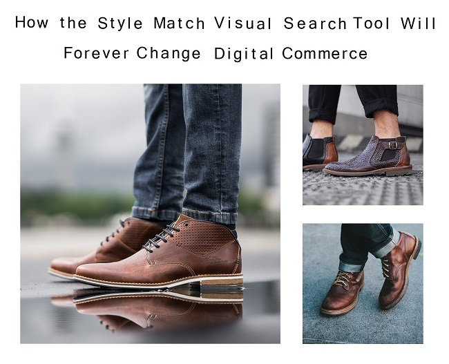 Visual Search and Style Match AI tool